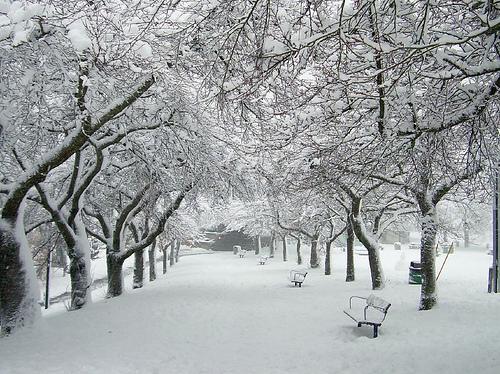 George Bacovia iarna